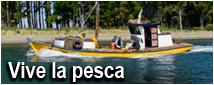 Viva Pesca