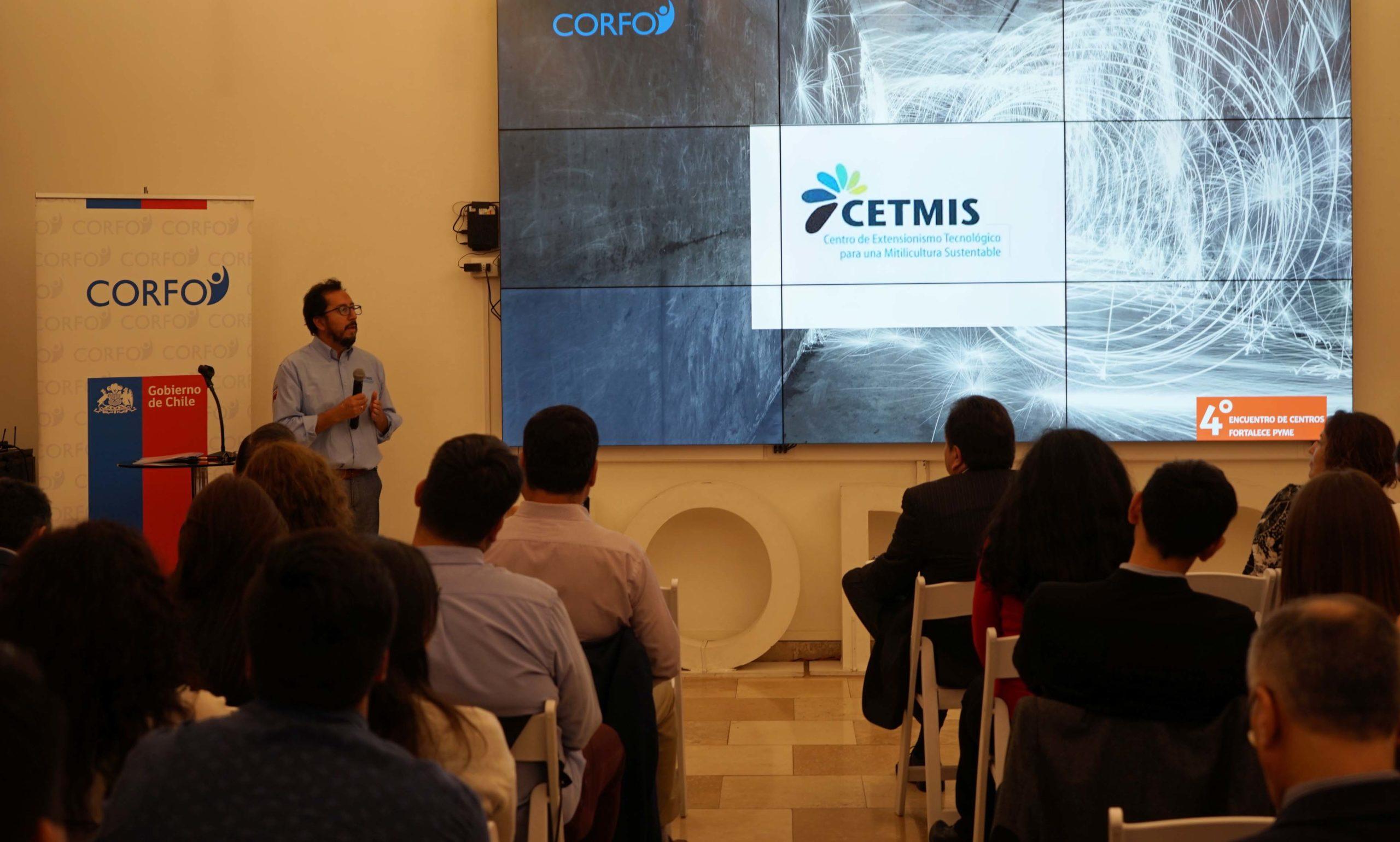 CETMIS participó de IV Encuentro de Centros Fortalece Pyme en Santiago
