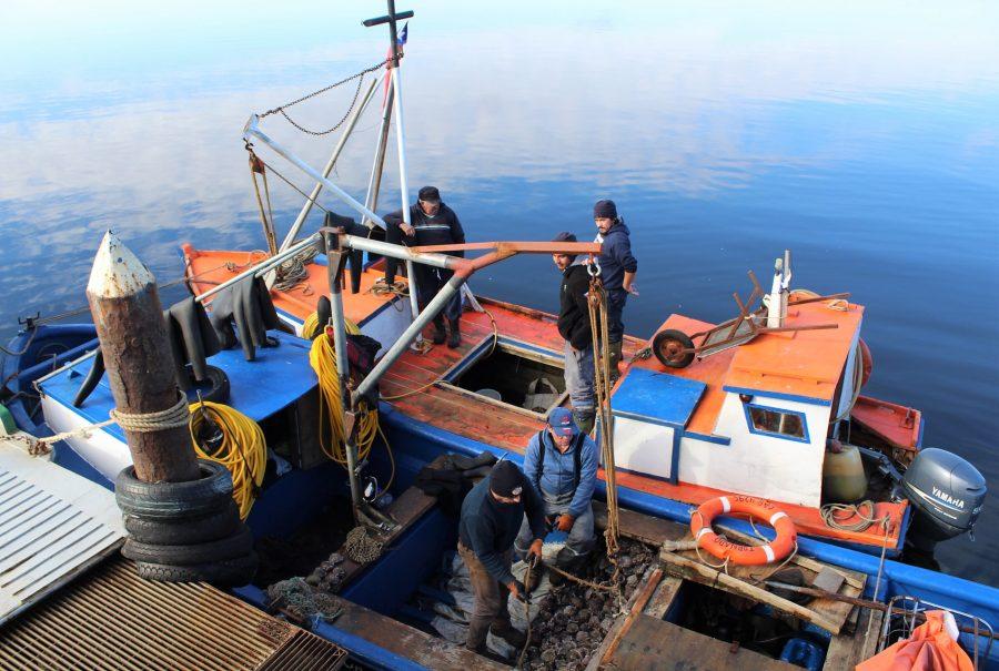 Fundación Chinquihue entregó  becas de capacitación a 17 trabajadores de la pesca artesanal