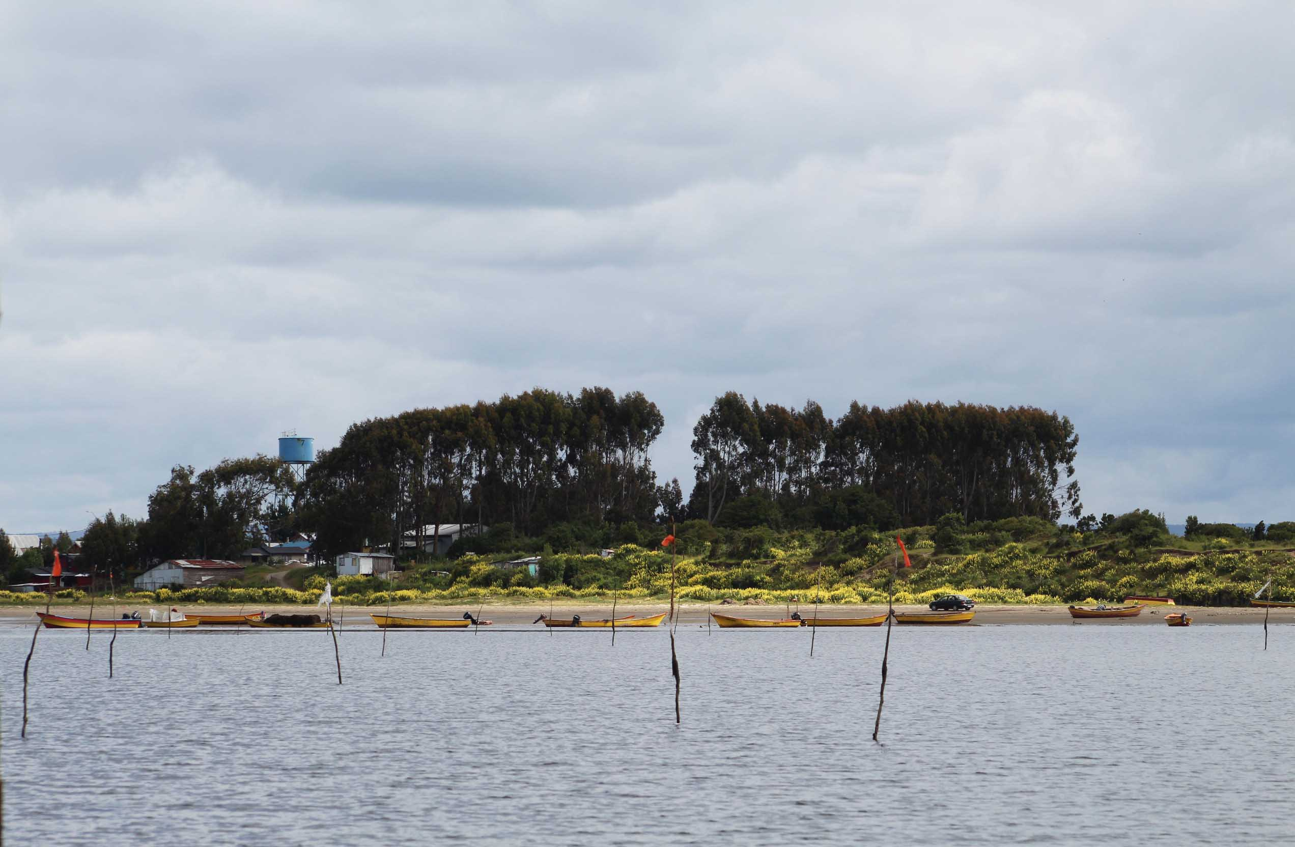 Seminario virtual abordará el impacto de la Ley Lafkenche en el borde costero