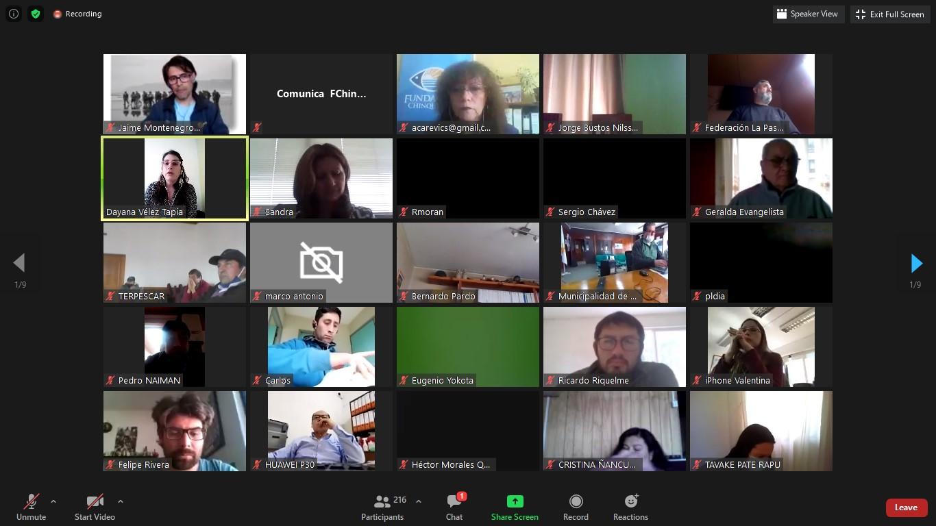 Seminario virtual abordó impacto de la Ley Lafkenche en el borde costero