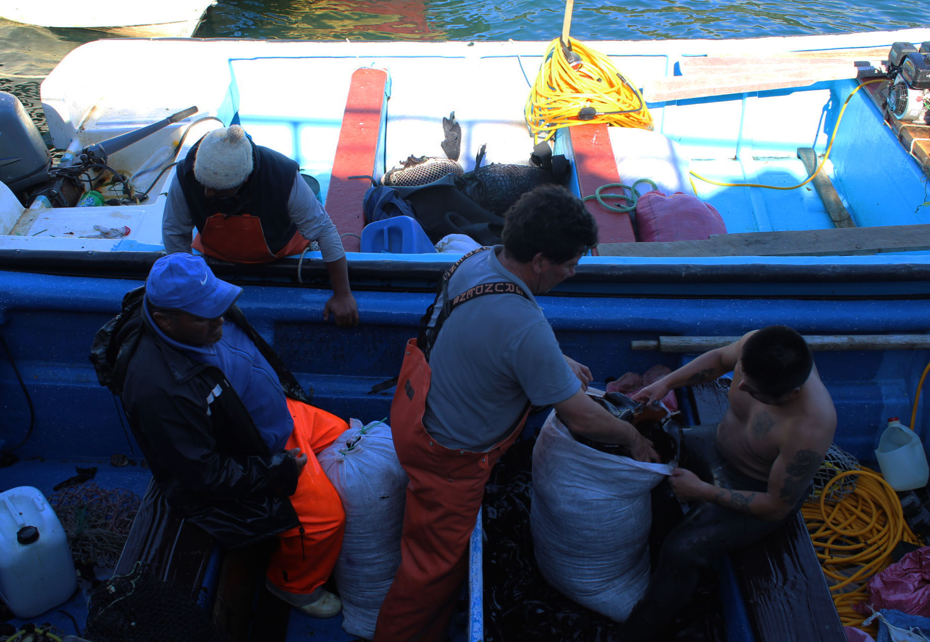 Resultados de proyectos admisibles concurso de diversificación productiva para pescadores artesanales de Ancud