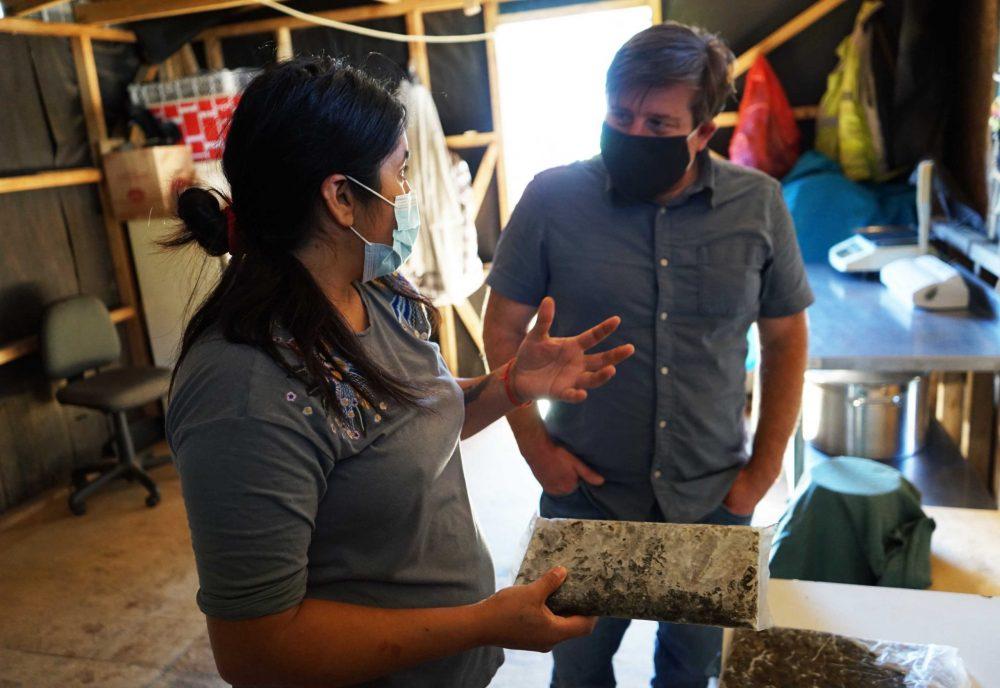Se amplía plazo para postular a fondos dirigidos a pescadores artesanales de San Juan de la Costa