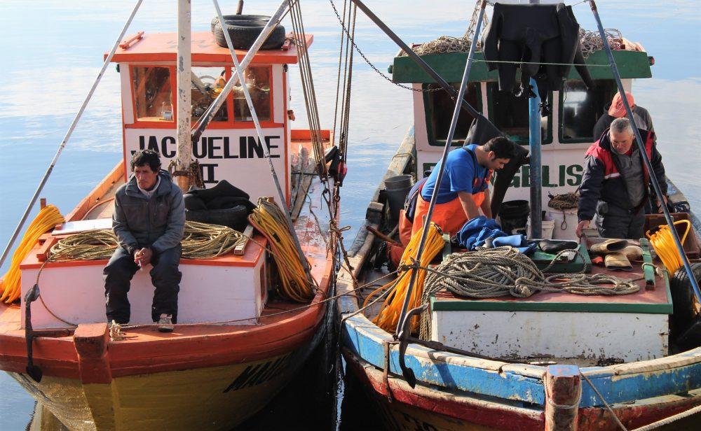 Llaman a pescadores artesanales de la Región de Los Lagos a integrar el directorio de Fundación Chinquihue